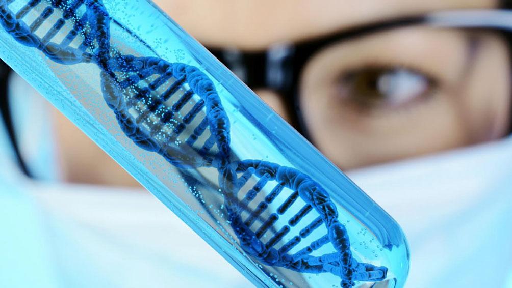 運動に関わる3つの遺伝子