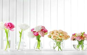 切り花の寿命はどのくらい?長持ちさせる方法は?