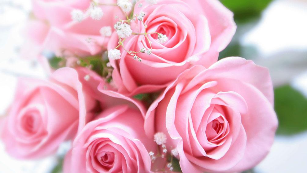 1日でも長く綺麗な切り花を楽しむ為に!