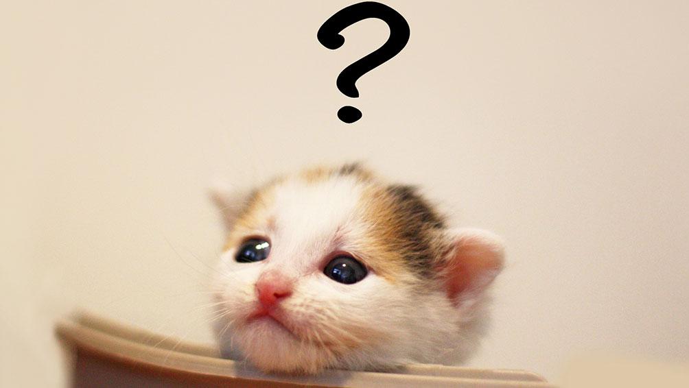 よくある疑問を解決!ココはどうやって決めれば良い?