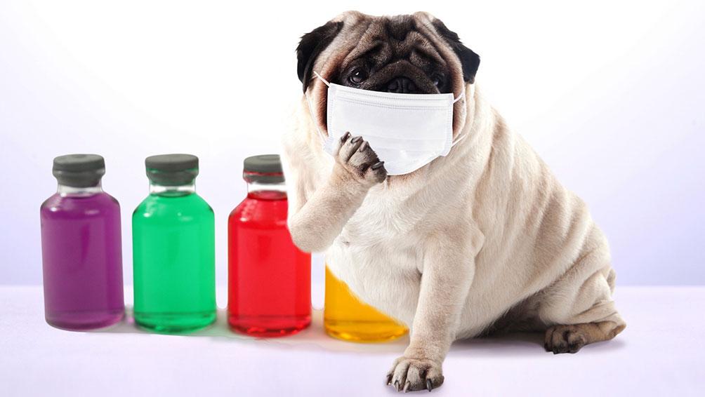 朝起きた時に出てしまう鼻水や咳、くしゃみの正体とは!?