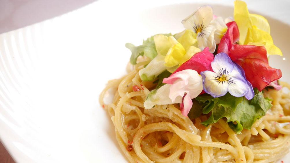料理を彩るエディブルフラワー!いったいどんな花?