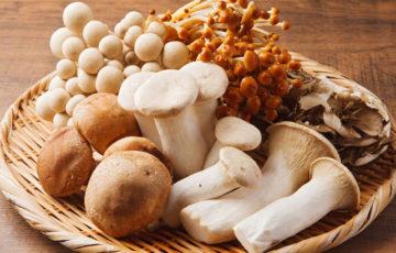 菌活には何の効果があるの?取り入れたい食材やレシピも公開!