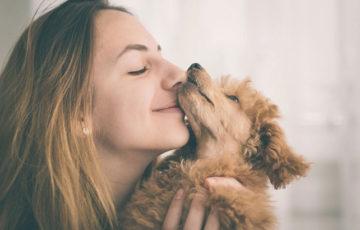 ペットを飼うなら保険に加入を!安心できるペット保険のメリットとは?
