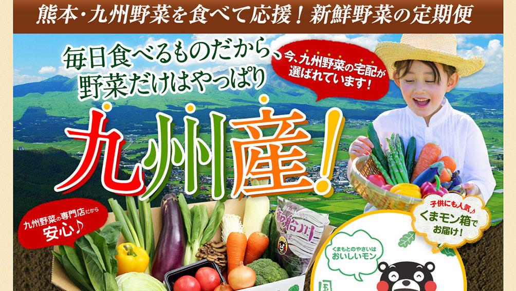 """新鮮な九州野菜をお届け!""""九州野菜王国"""""""