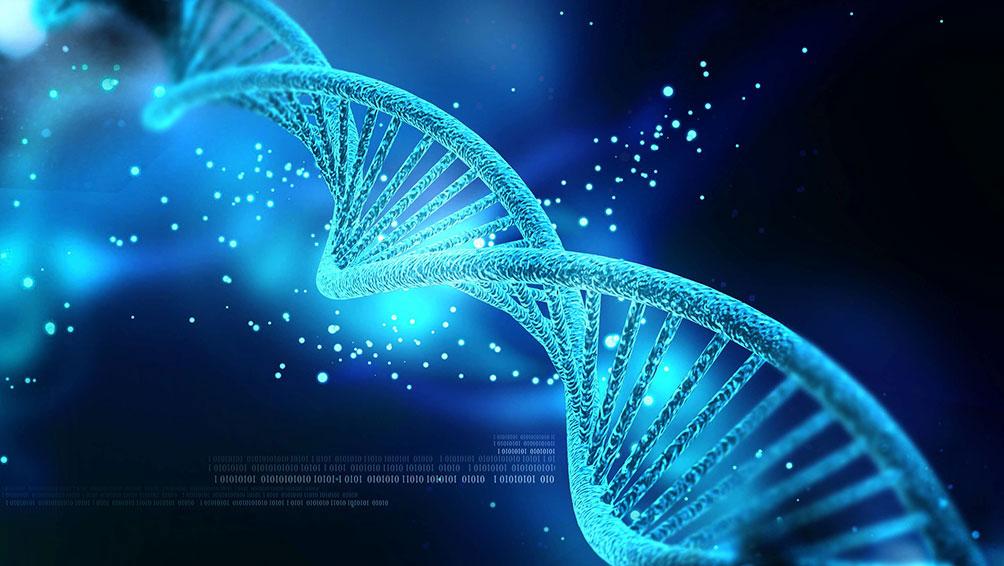 様々な方面で遺伝子検査は役立っている!