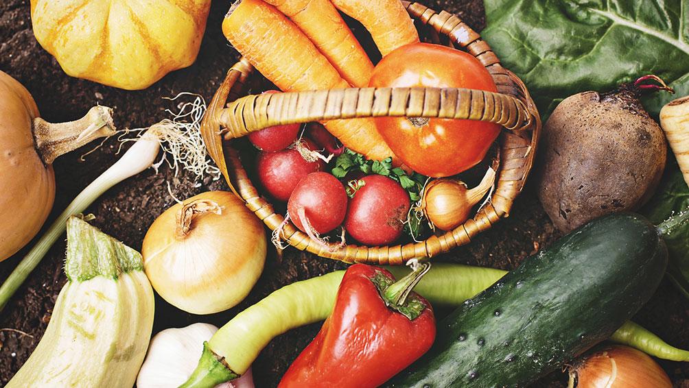①食べ物への感謝の気持ちを育てる「食育」