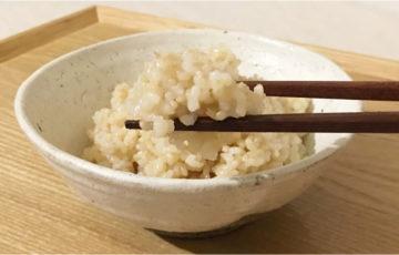 栄養抜群!美容・健康効果が期待できる発芽玄米「発芽玄米の底力」を実食体験